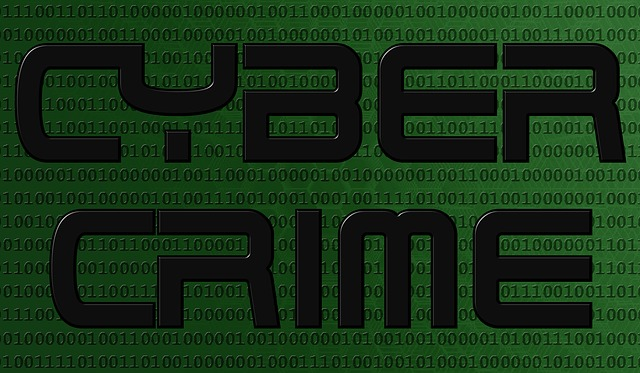 cyber-crime-1012751_640