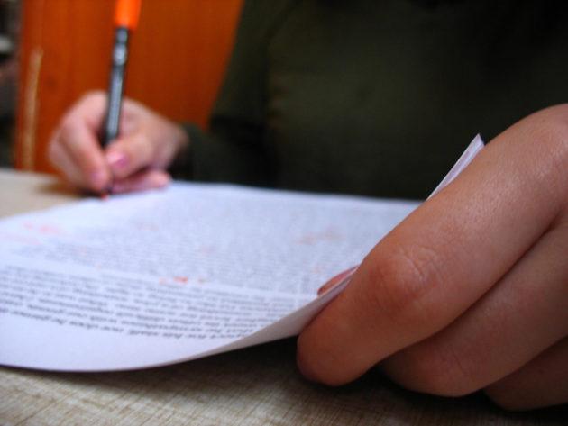 original-essays